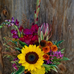 Wild summer or fall mix