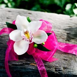 Cymbidium ribbon wrist corsage